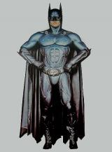 fantasia de Batman Begins - Painel