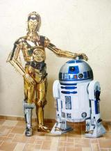 fantasia de C3PO e R2-D2
