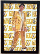 fantasia de Elvis Presley