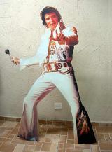 fantasia de Elvis Presley - Show